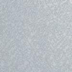 coralbatross
